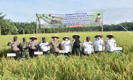 Zahir : Kehadiran Pemerintah Harusnya Jadi Konsultan Bagi Petani
