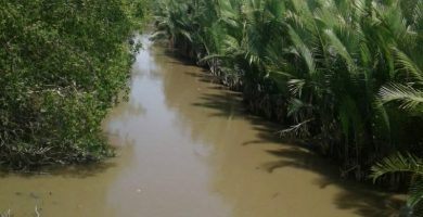 Guna mengatasi Banjir Air Laut, Warga Minta Sisi Sungai Perlu Dibendung